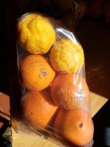 Citrus Care Pack