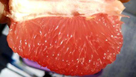 Ruby Star Grapefruit