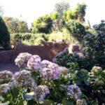 Garden Centre Landscaping