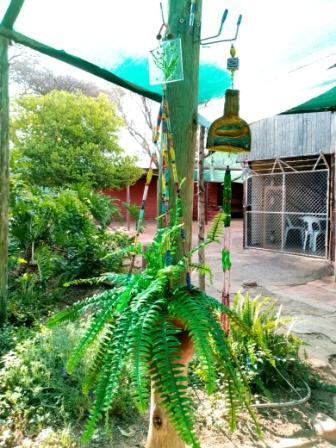 Garden Center Decor